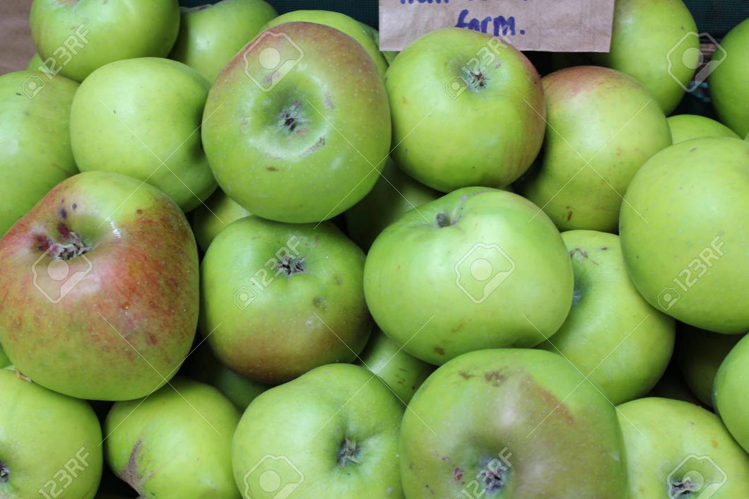 Apples- Bag of 8 -Cooking Bramley