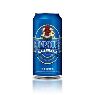 Blueberry Ale - 473 ml can