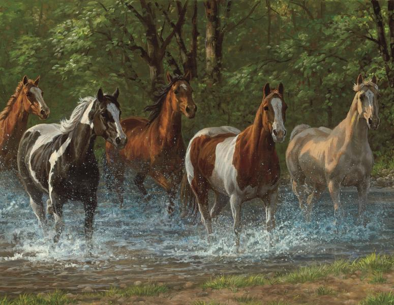 PUZZLE-SUMMER CREEK 500PCS