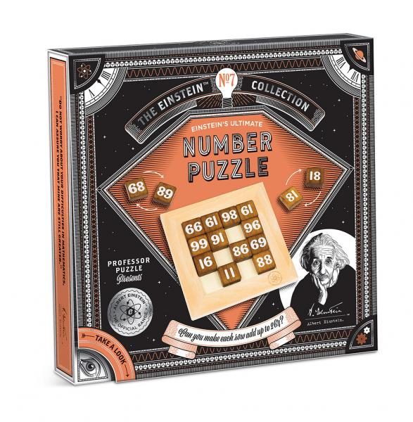 EINSTEINS NUMBER PUZZLE