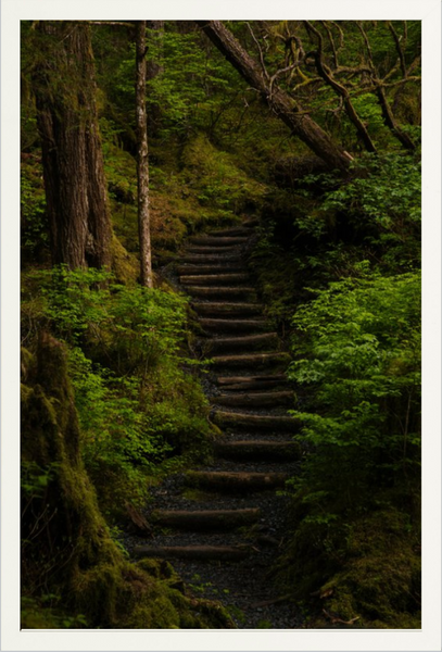 Tongass Stairs