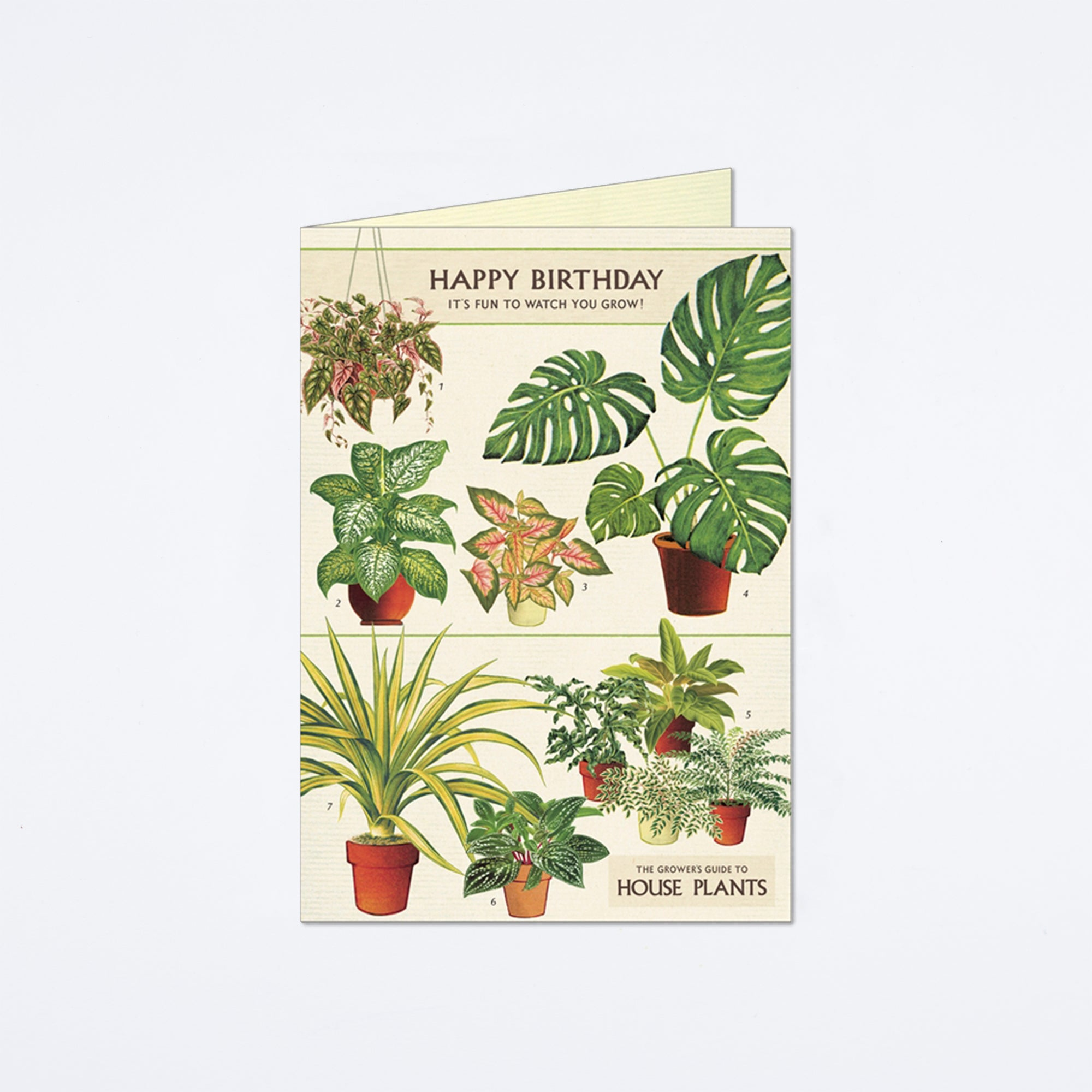 Happy Birthday House Plants Card