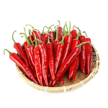 [Galleria] Red Chilli 1lb