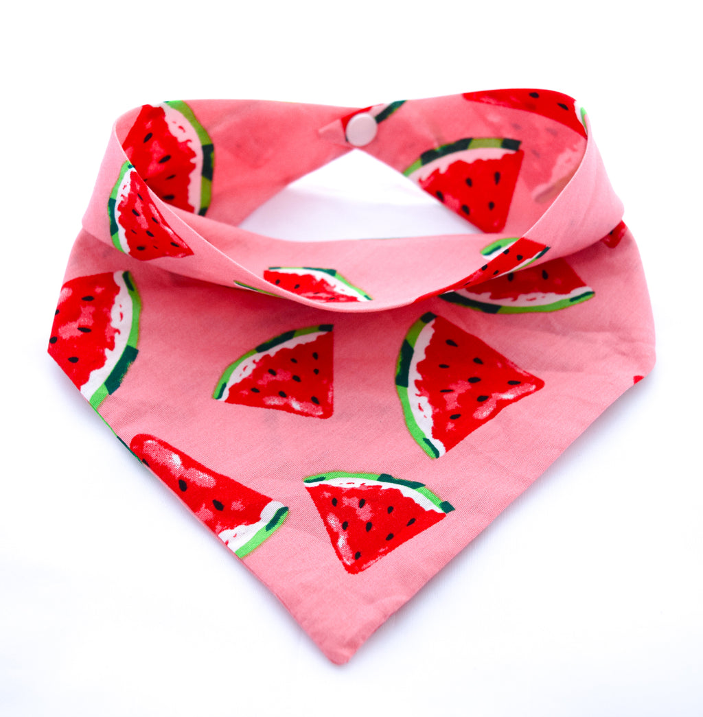 pink cotton dog bandana with watermelon pattern