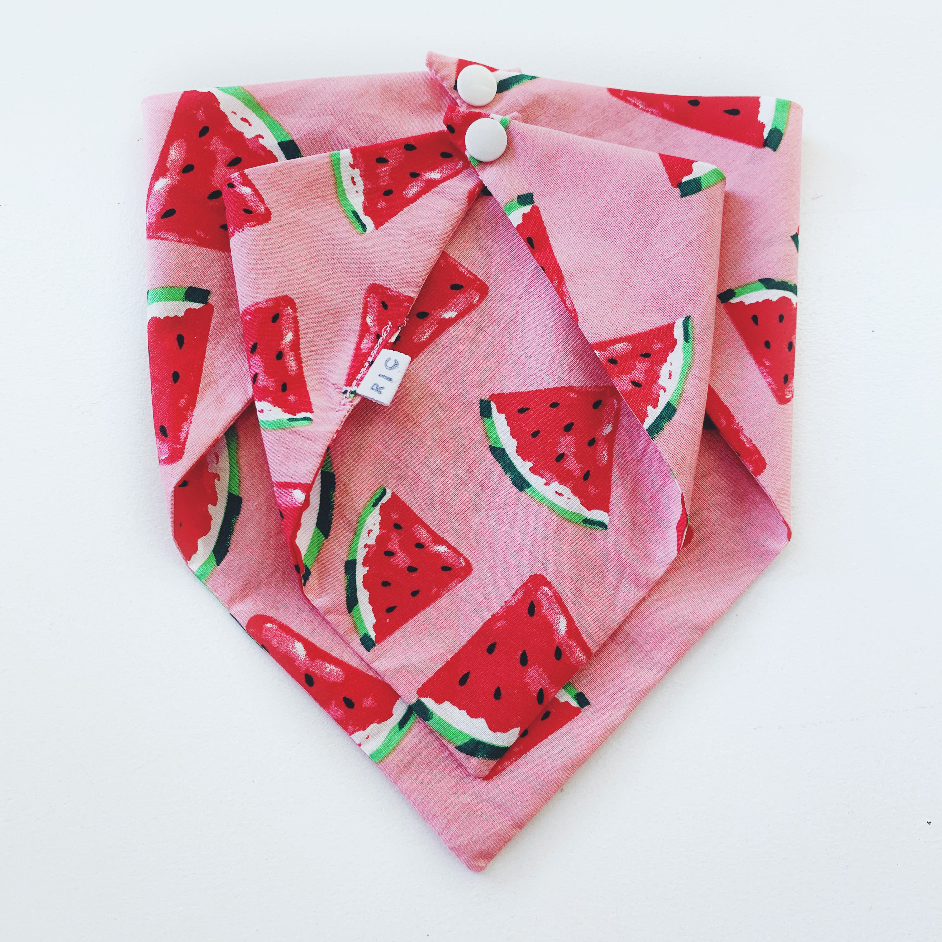 Watermelon Doggie Bandana
