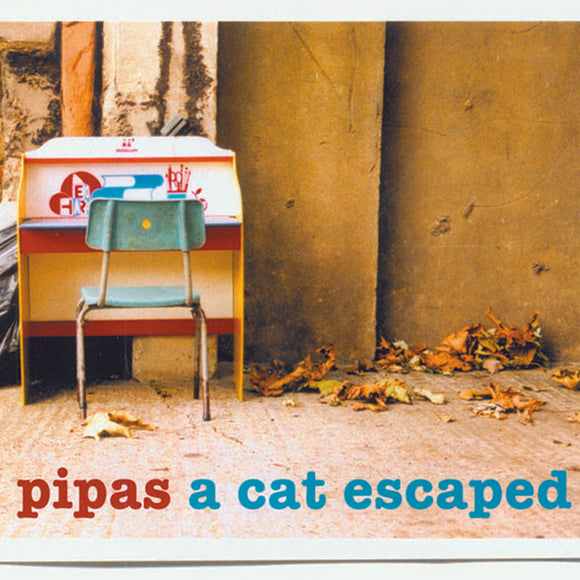 Pipas - A Cat Escaped