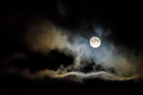 Halloween, Trick or Treat, Harvest, Halloween Moon