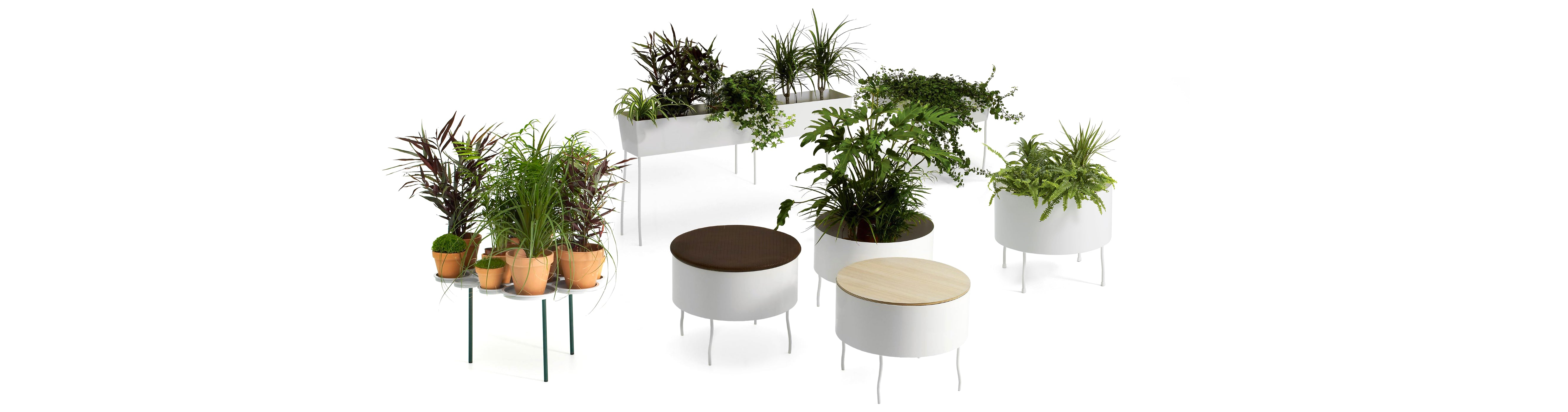 Offecct O2ASIS Green Pedestal Round Plant Stand