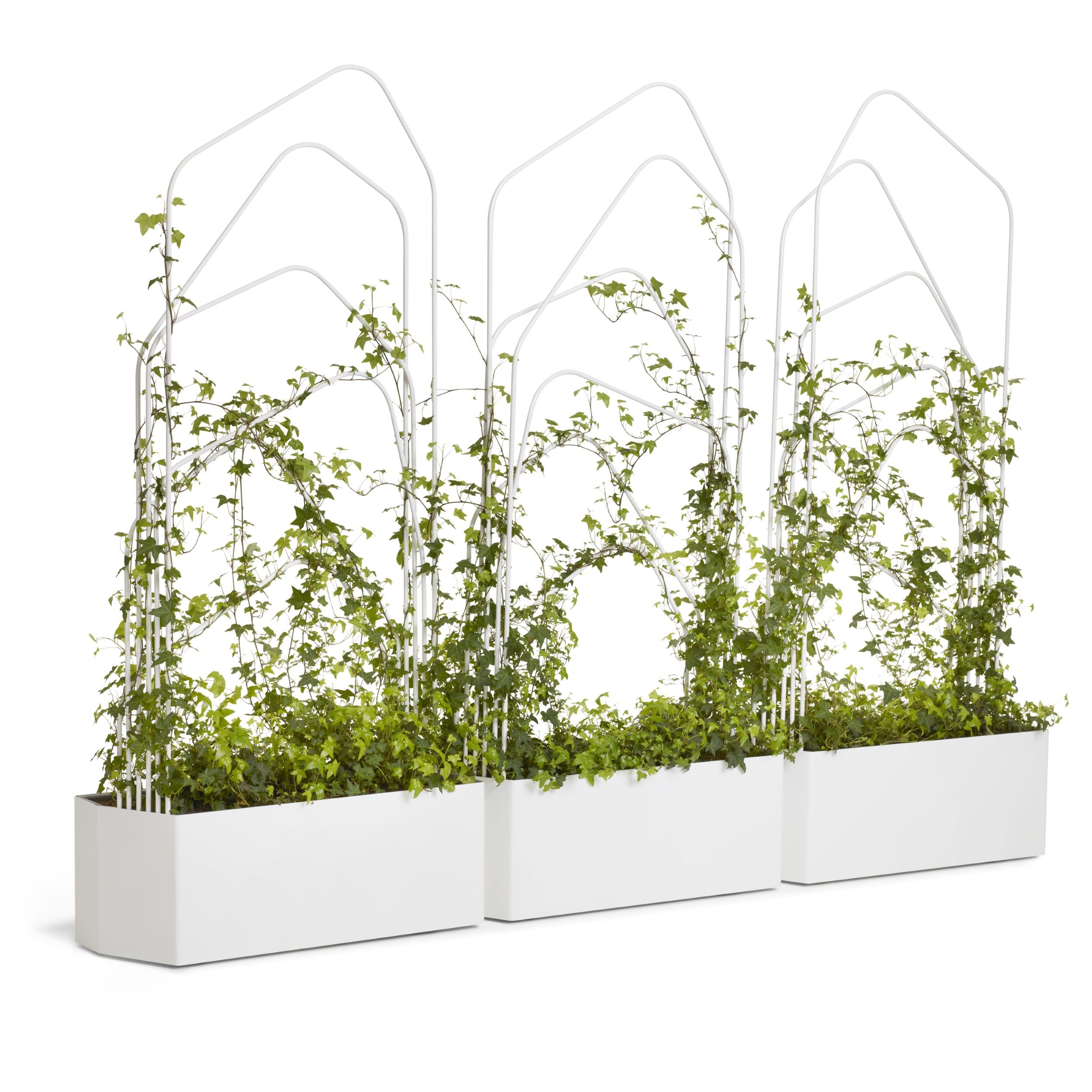 Offecct O2ASIS Green Divider Planter Box