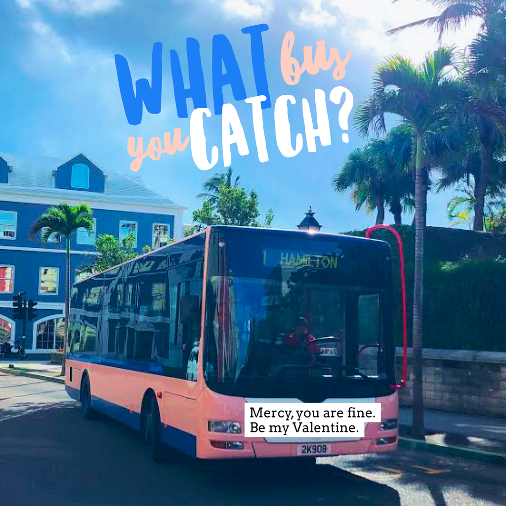 What Bus You Catch?