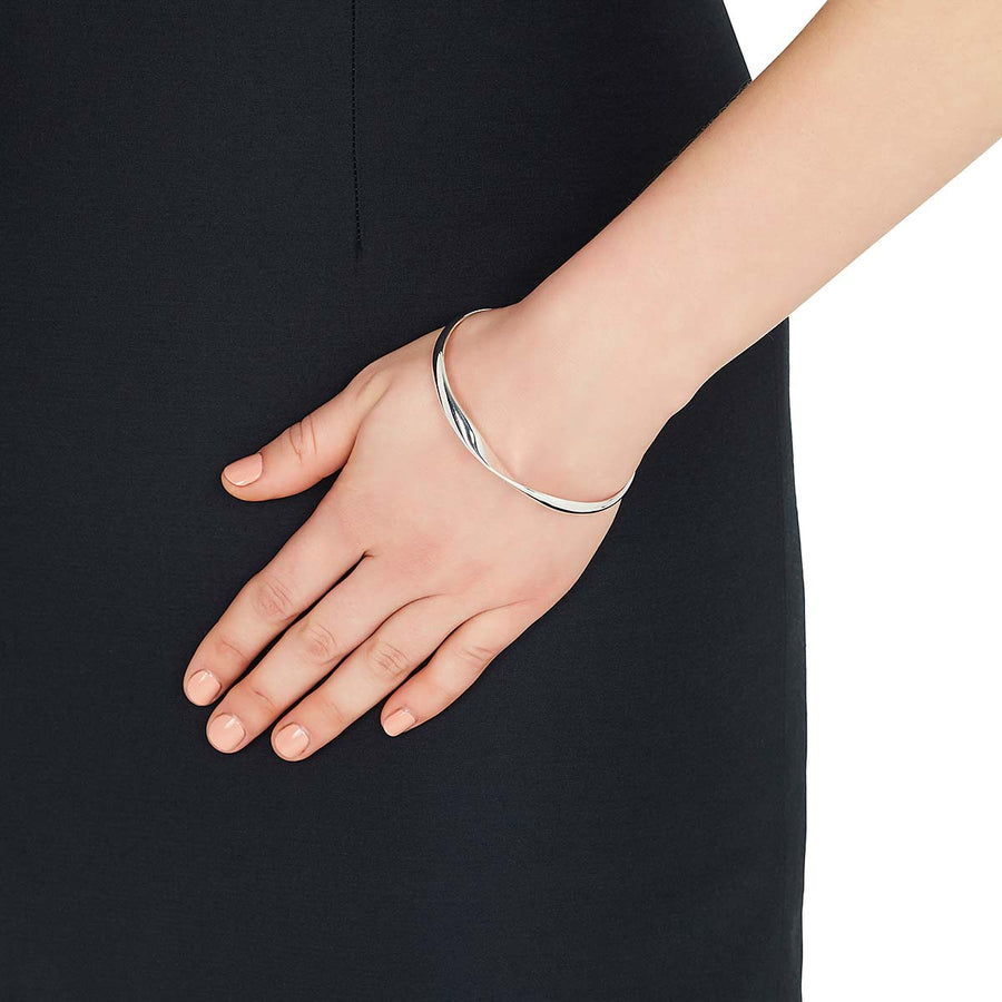 Najo Alchemy Bangle - The French Door Jewellers