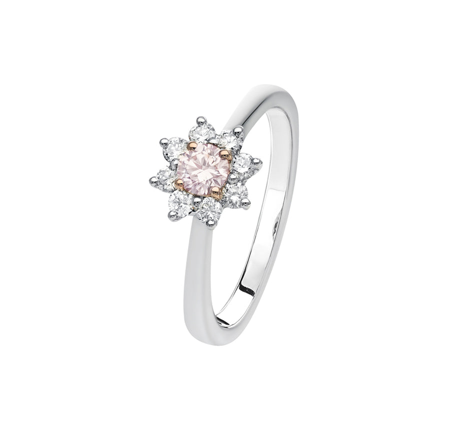 Argyle Kimberley Regis Ring - The French Door Jewellers