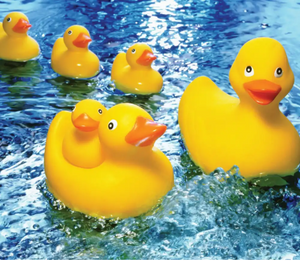 60 piece Rubber Duckie