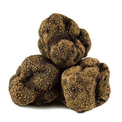 Chinese Black Winter Truffles (15oz/can)