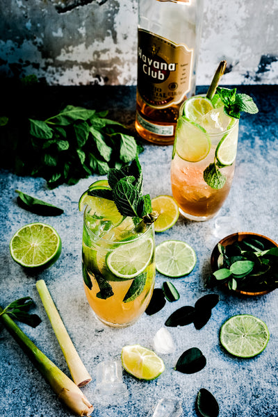 Mojito summer cocktail