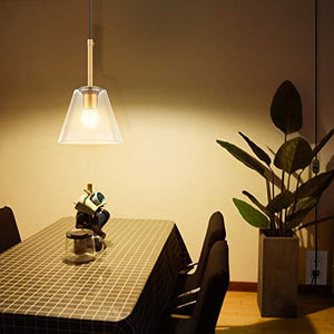 Plug in Pendant Light - StayCay Lifestyle