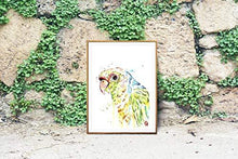 Load image into Gallery viewer, Parrot Wall Art - StayCay Lifestyle