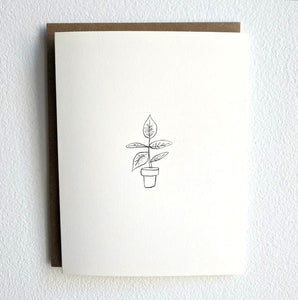 All of the Thank You Cards Collection