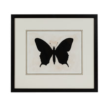 Load image into Gallery viewer, Black Butterfly 4