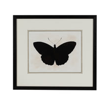 Load image into Gallery viewer, Black Butterfly 2