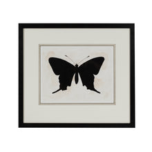Load image into Gallery viewer, Black Butterfly 3