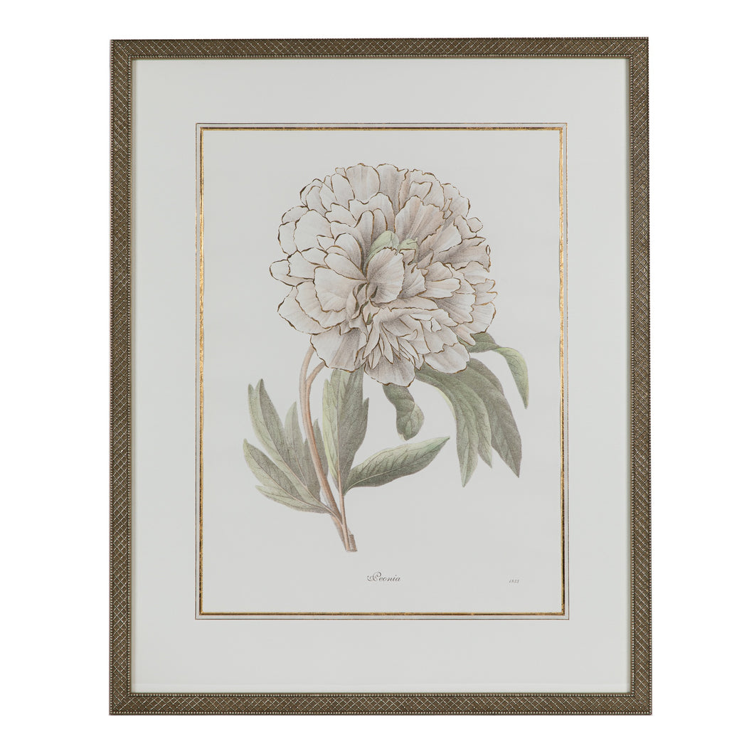 Green & Ivory Floral Lithograph 1