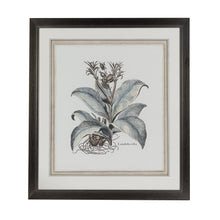 Load image into Gallery viewer, Steel Blue Botanical Lithograph 2