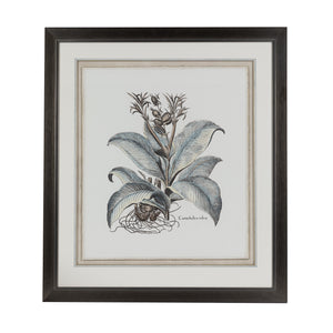 Steel Blue Botanical Lithograph 2