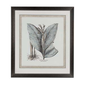 Steel Blue Botanical Lithograph 1