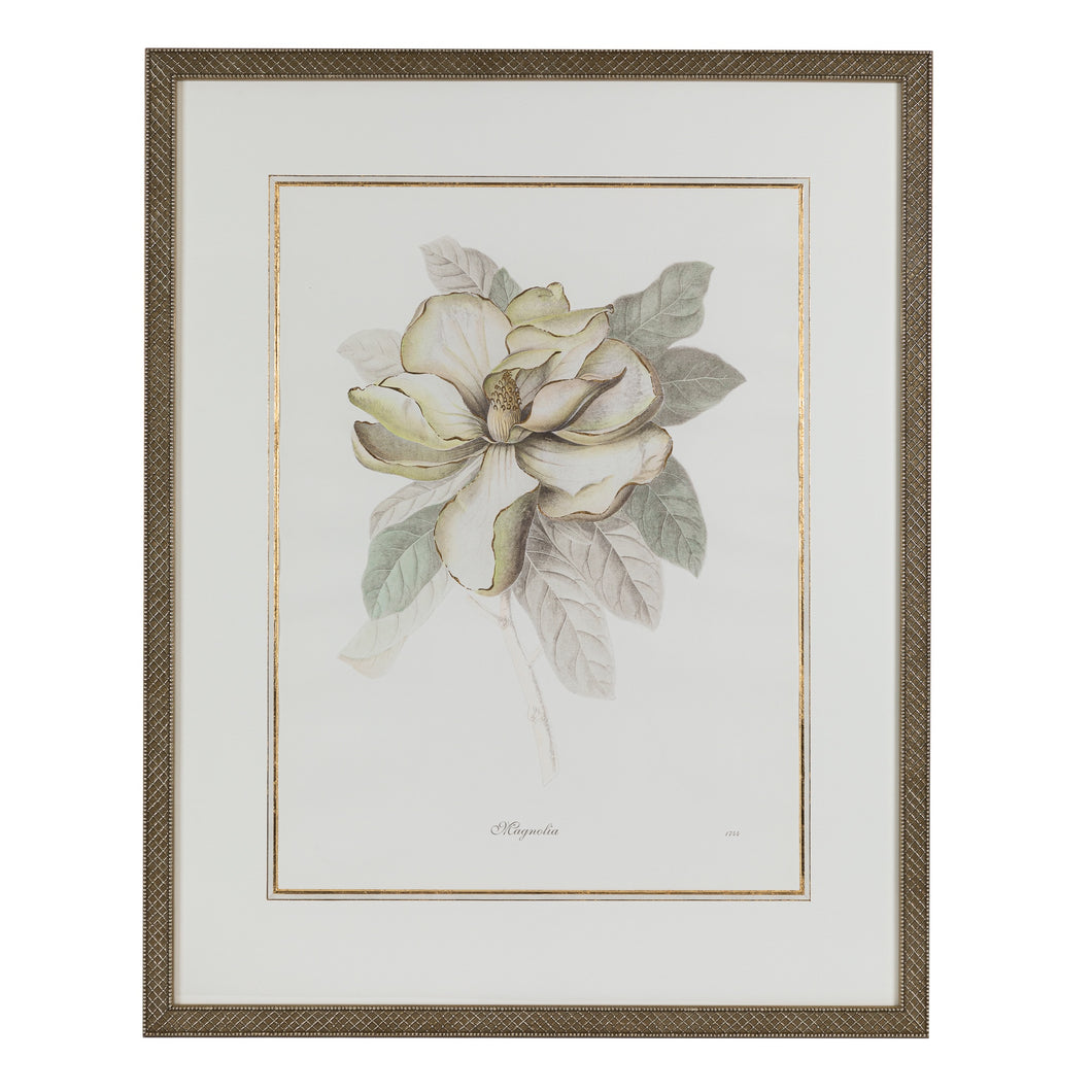 Green & Ivory Floral Lithograph 3