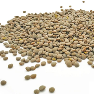 Olive Green Lentils from Hertfordshire - Elysia Groceries | London