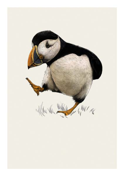 The Art File - Puffin
