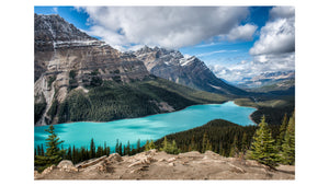 Peyto Lake on a perfect summer day