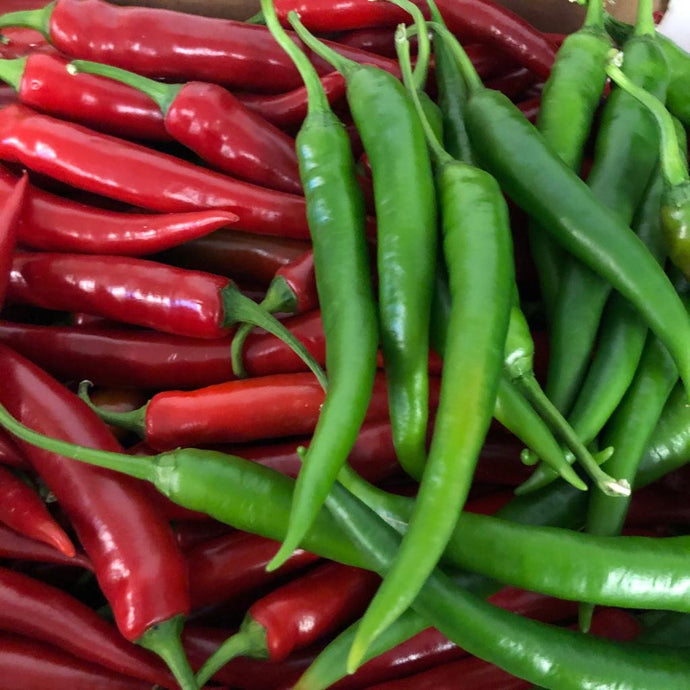 Mixed Chillies (100g)