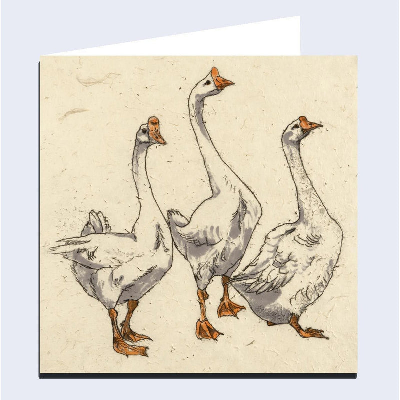 'Three Geese' Greeting Card