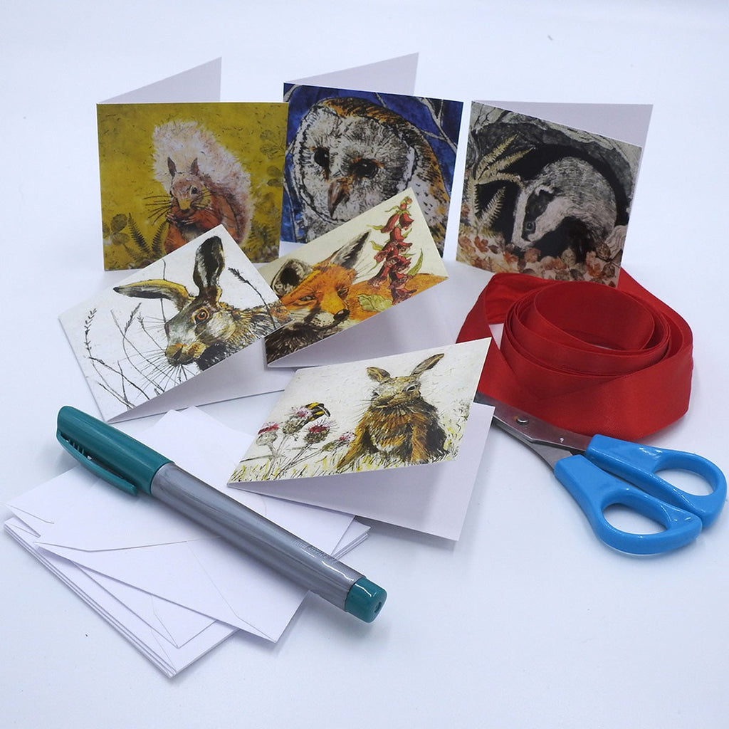 'Wildlife' Mini Card Box Set