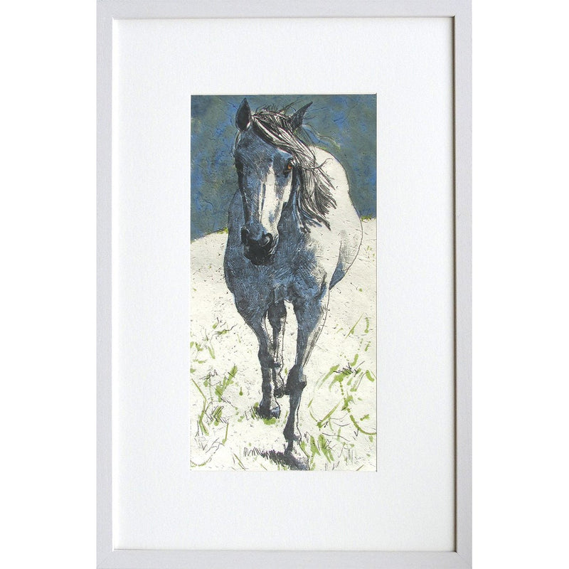 'Horse with no Name'