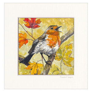 'Autumn Robin'