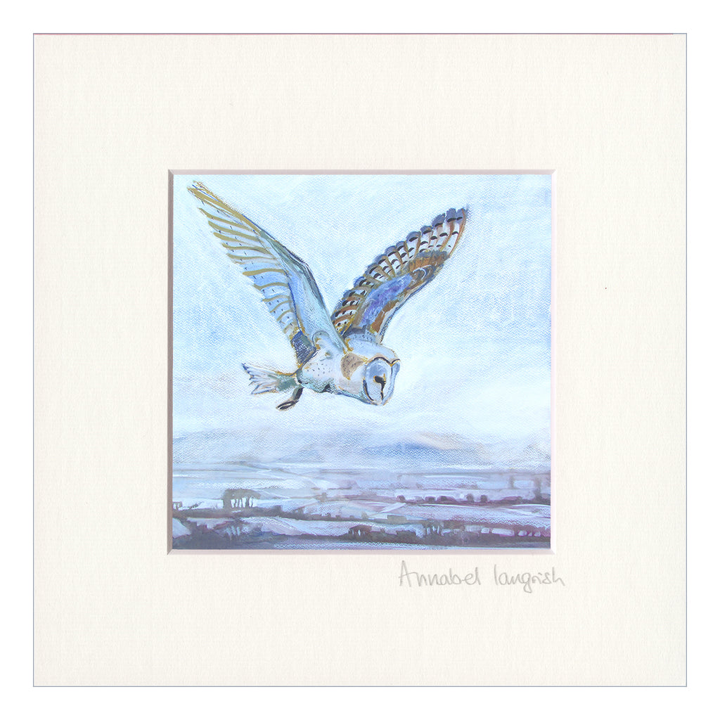 'Barn Owl Hunting'