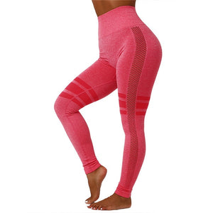 Seamless Mesh Hollow 2 Pcs Gym Suit Set