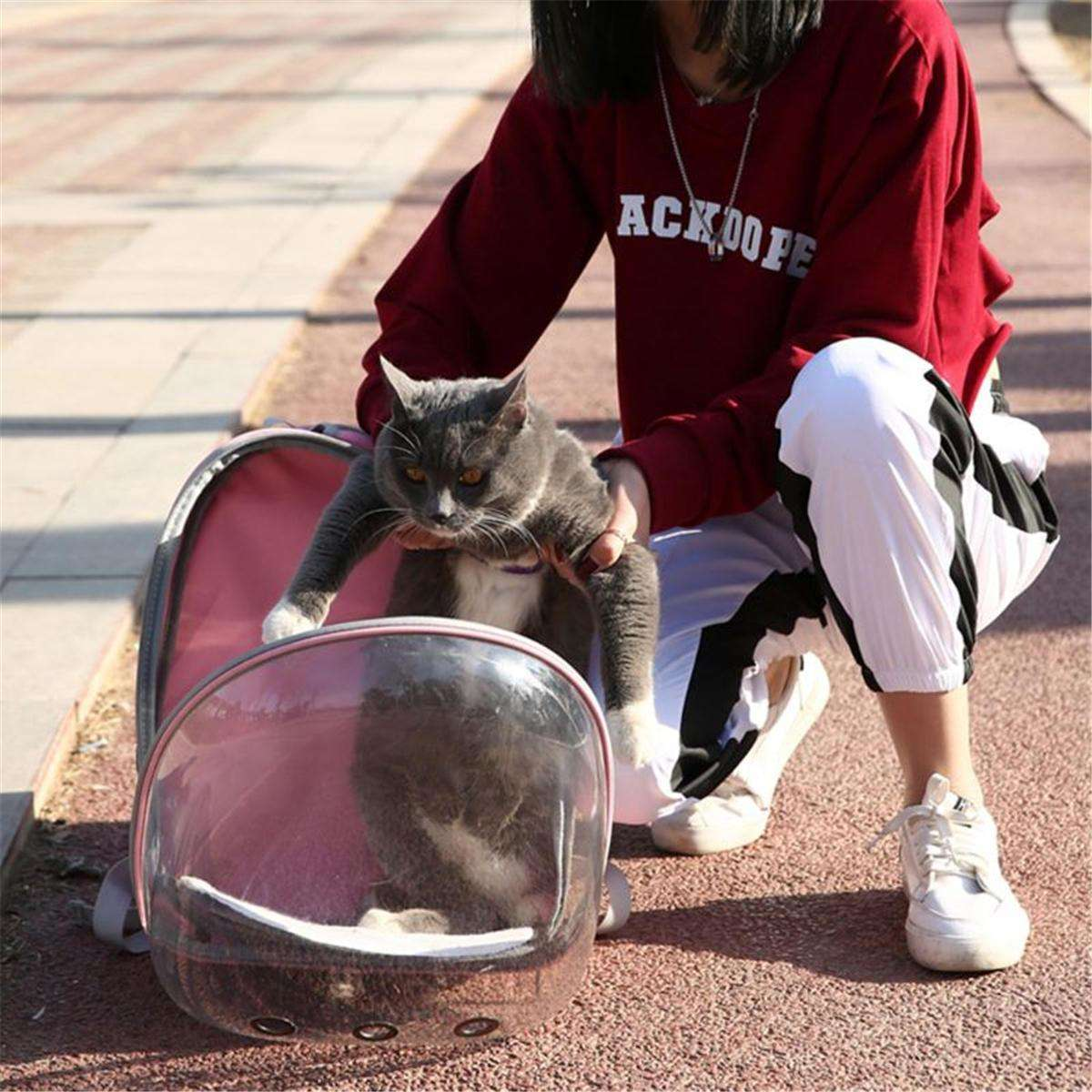 Pet Cat Parrot Bird Transparent Breathable Travel Carrier Backpack-Pet Backpack