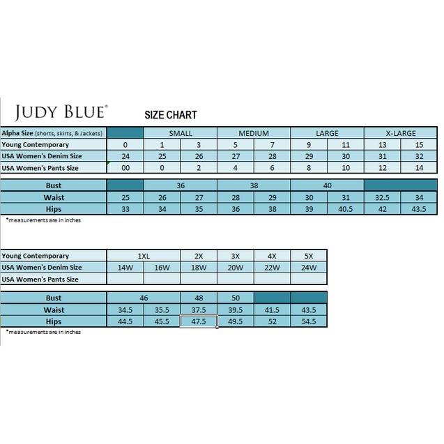 Judy Blue Minimally Destroyed Skinny