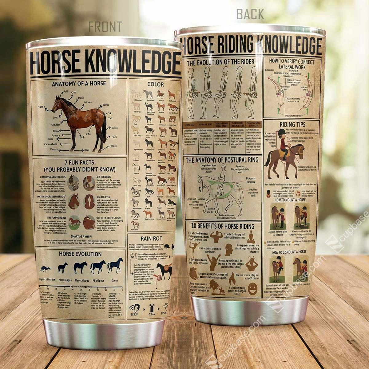 Horse Riding Knowledge Stainless Steel Tumbler TA031810-TA-Vibe Cosy™