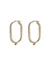 Amber earrings <br>Gold