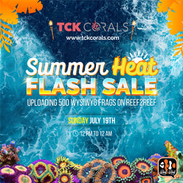 TCK Summer Heat Flash Sale This Sunday July 19th