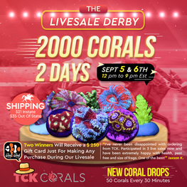 The Livesale Derby Sale!