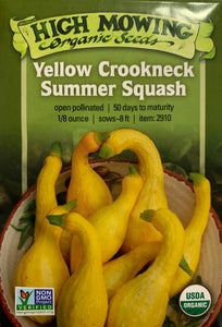 SEEDS: Squash - Yellow Crookneck Summer - Organic