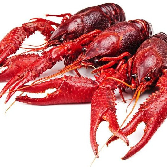 Fresh Cooked Whole Crawfish Mississippi (2.5lb case, fresh)