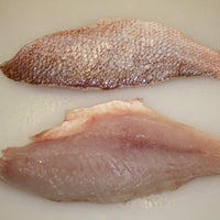 Wild Genuine Gulf Red Snapper Fresh fillets, skin/on, scaled, pin-bone out (a 2.5lb case, fresh)