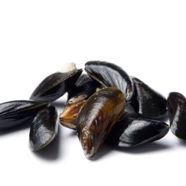 Fresh Maine Cultivated Whole Blue Mussels (10lb bag, fresh)